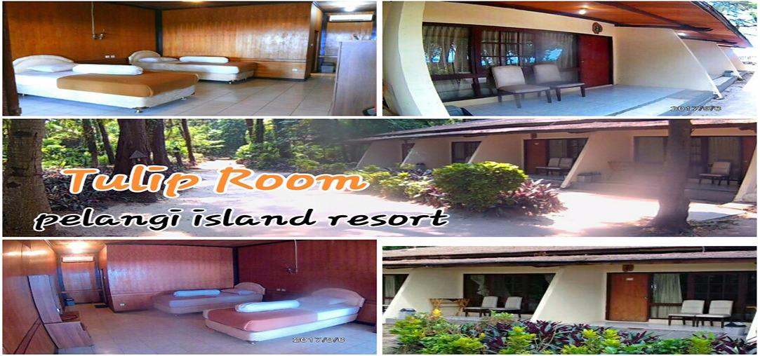 Cottage Pulau pelangi kepulauan seribu Tipe tulip room
